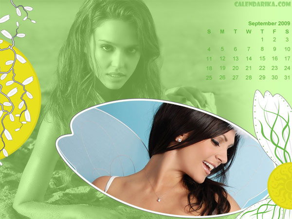 Calendar Wallpaper. Camomiles